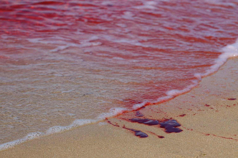 """""""Čistič zločinu"""" odhaľuje, aké je čistiť miesta po vražde"""
