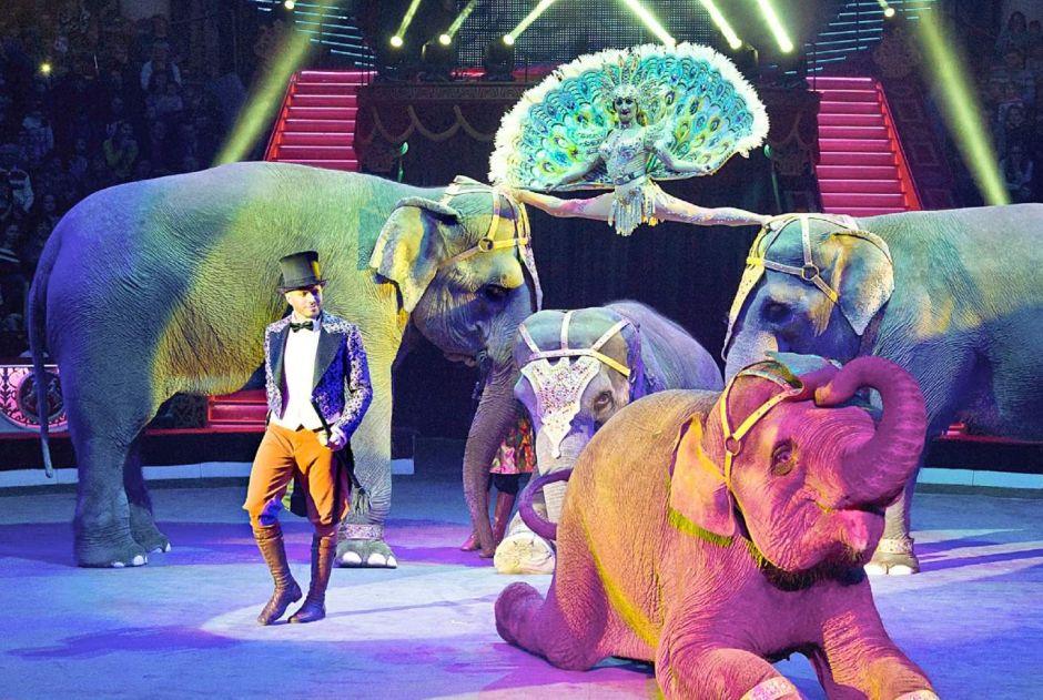 Netradičný cirkus zrušil všetky tradície: Živé zvieratá nahradili hologramy!
