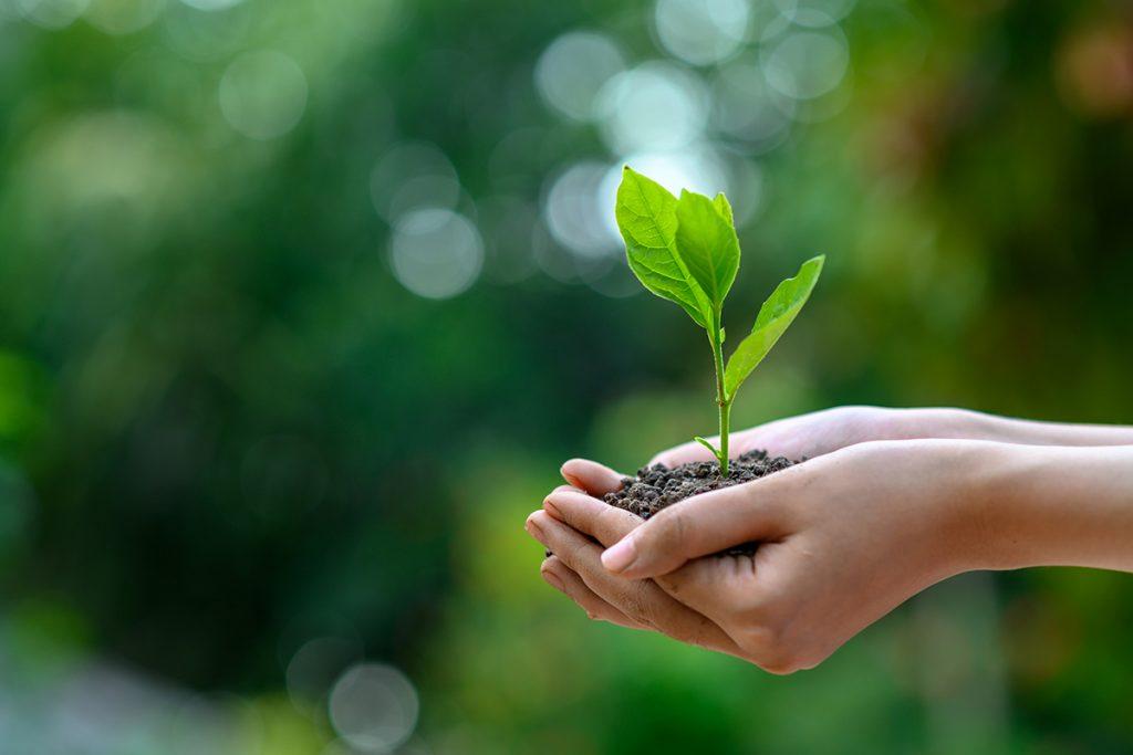 PRÍRODA je ŽIVOT! Najvýraznejšie kroky k šetreniu životného prostredia posledných rokov! Čomu by sme sa mali vyvarovať!?
