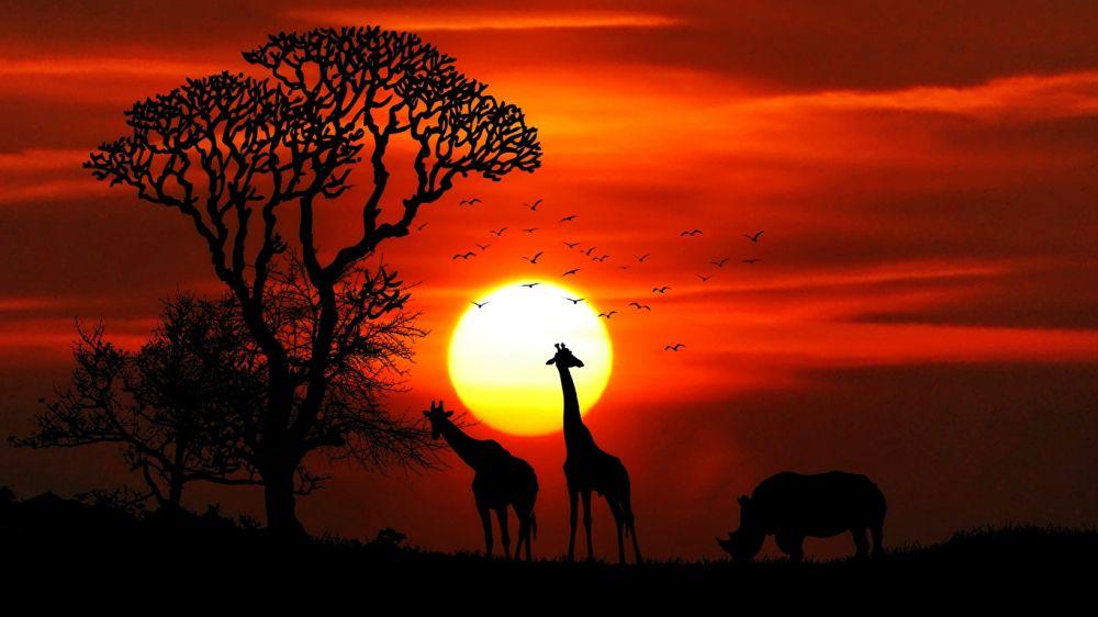 Poklad v podobe zlata či banánové pivo!? Fakty o slnečnej Afrike vás prekvapia!